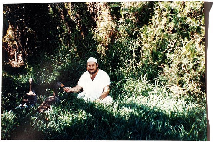 Manuel Cabrera Lamparter